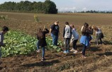 Schule am Bauernhof Herbstprogramm 2016