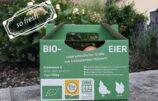 Bauernhof-Angebot: Bio-Ei-Kilo